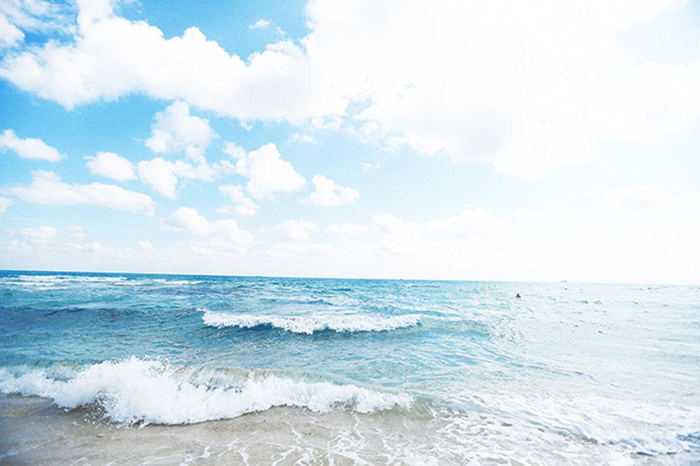 ocean miami 1